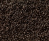 Vegetable Garden Soil